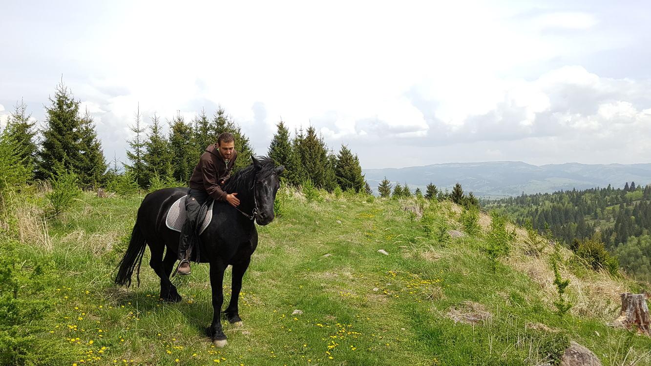horse riding Toplita