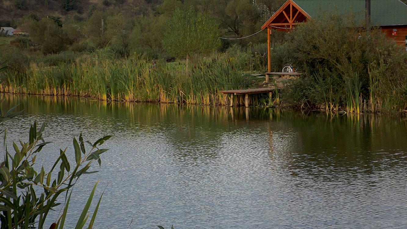 fishing Toplita